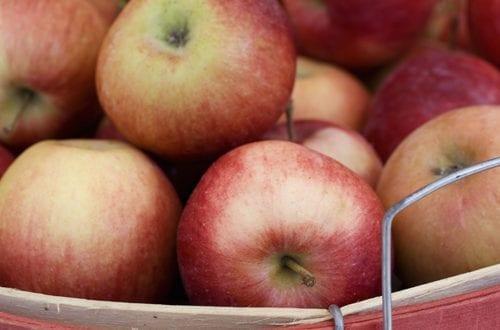 Panier de pommes